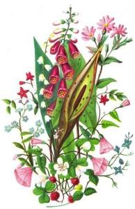 Pink_Floral_Bouquet