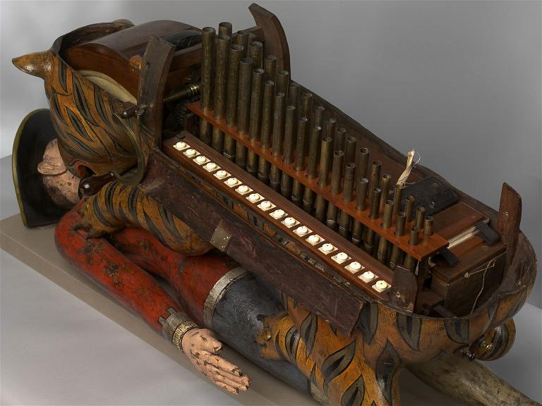 tipoos-tiger-organ view